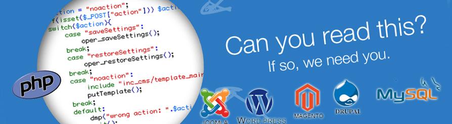 php mysql programmer resume ebook database